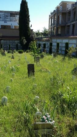 cimitero pantana 2