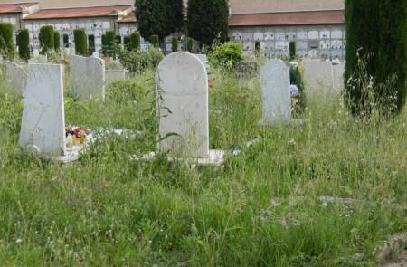 incuria al cimitero