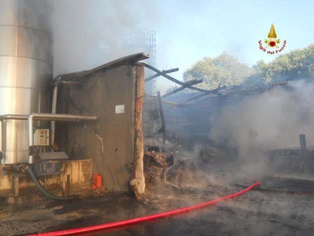 Incendio Potenza Picena 3