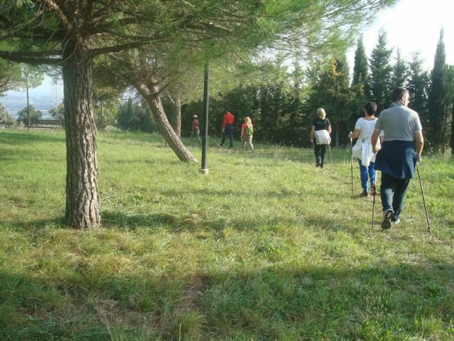 Via Verde Macerata (3)