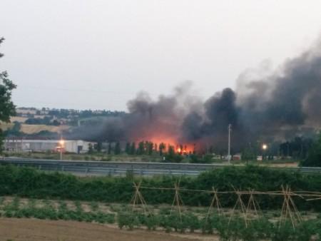 incendio cosmari orlandi