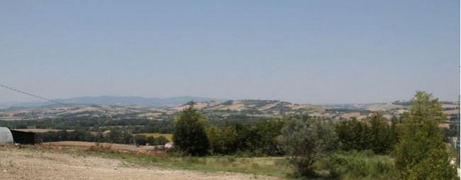 panorama filarmonica 2