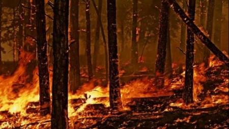 prevenzione incendi (2)