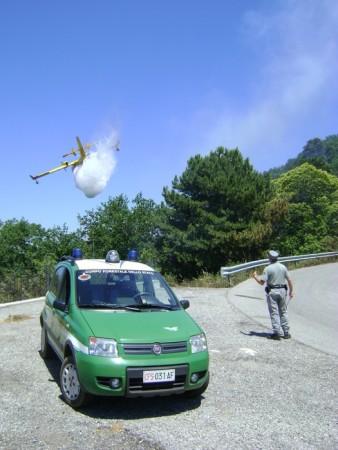 Cfs arresta un uomo sorpreso ad appiccare fuoco in zona rurale.