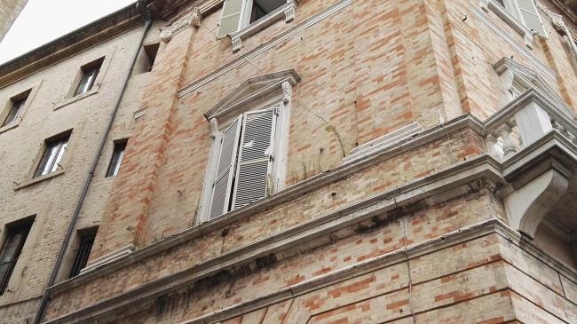 erba su finestra comune (1)