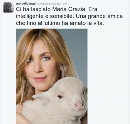 Il tweet di Marcello Masi, diretto del Tg2