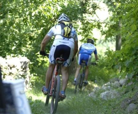 Escursionisti sulla mountain bike