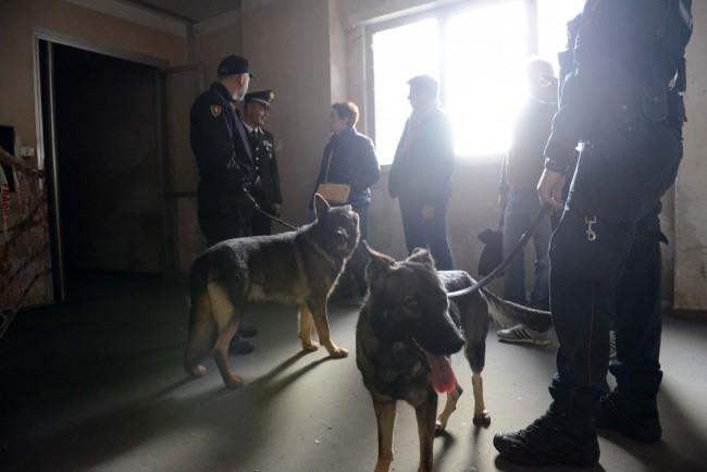 blitz interforze hotel house porto recanati (12) cani antidroga carabinieri
