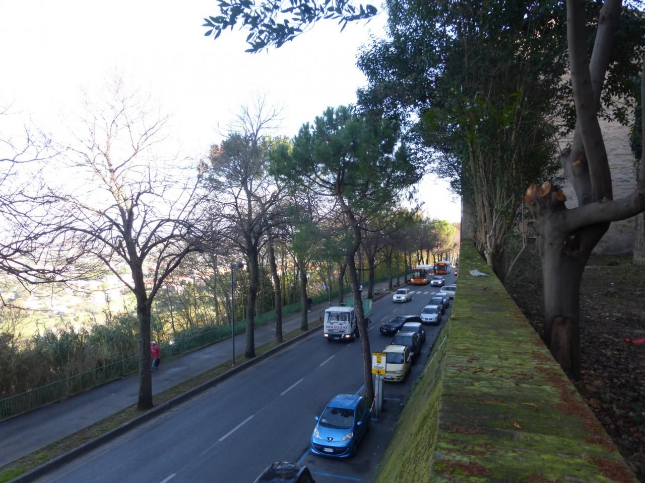 giardino monachette intermesoli macerata (2)