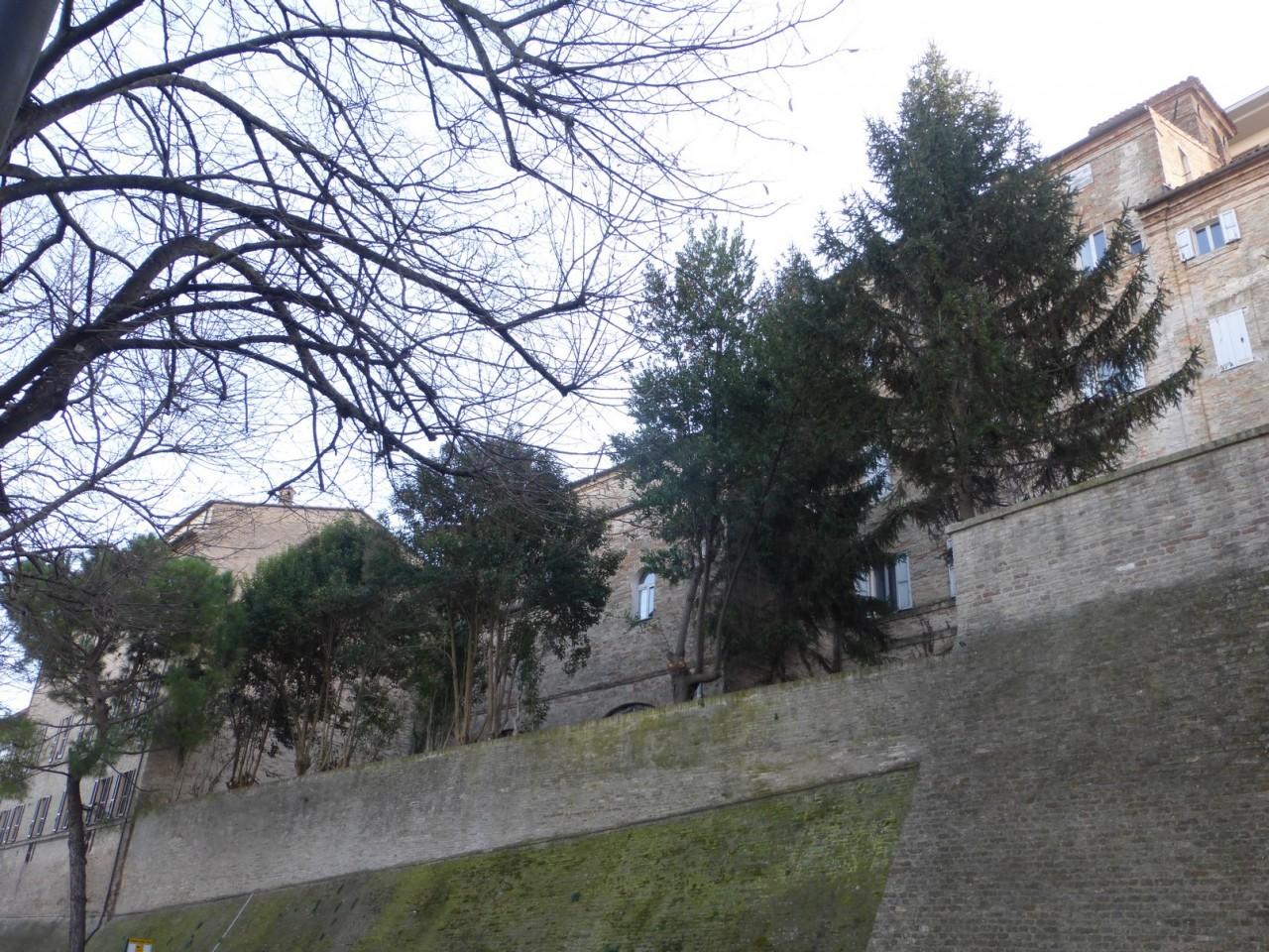 giardino monachette intermesoli macerata (66)