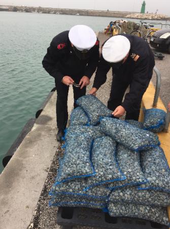 Le vongole trovate sotto misura e sequestrate ad un peschereccio