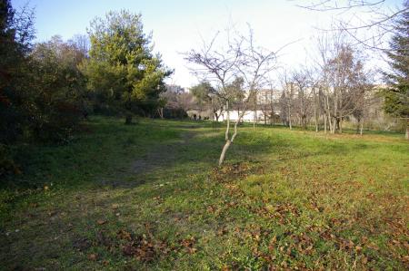 Fontescodella (1)
