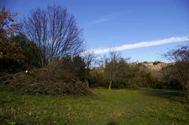 Fontescodella (13)