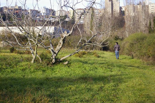Fontescodella (3)