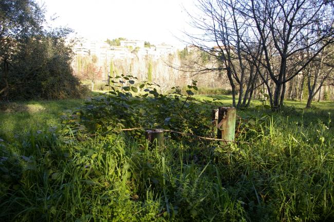 Fontescodella (6)