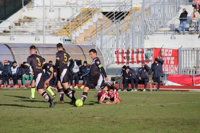 mAceratese-Lupa Roma_Foto LB (16)