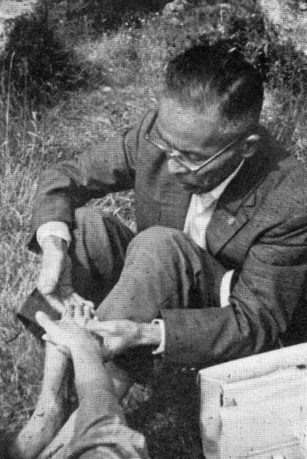 Georges Ohsawa macrobiotico 2ù