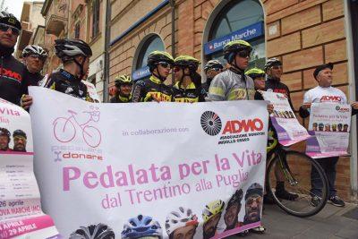 pedalata per la vita - admo - bicilette in corso umberto - civitanova (7)