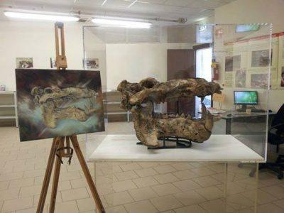 Museo Paleontologico a Serravalle
