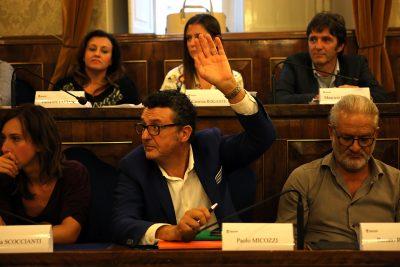 consiglio-comunale-micozzi-voto-astenuto-park-sì_foto-LB