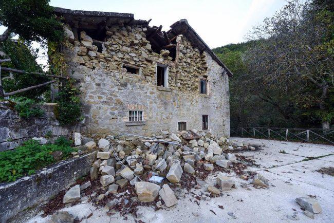 post-terremoto-cane-tito-forca-di-montegallo-7