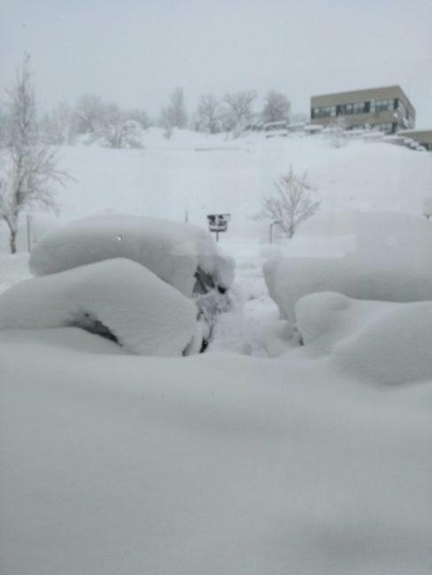 Neve-Camerino-18-gennaio-5-488x650