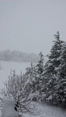 campagna-tolentino-neve