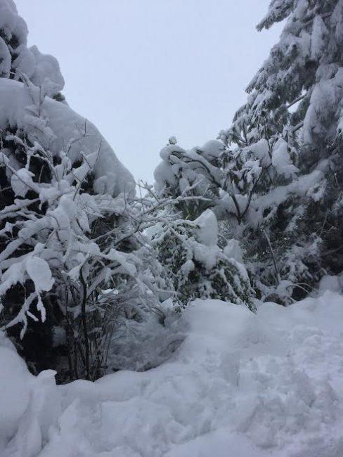 foto-lettori-neve-silvia-concetto-loro-piceno-san-lorenzo-3-488x650