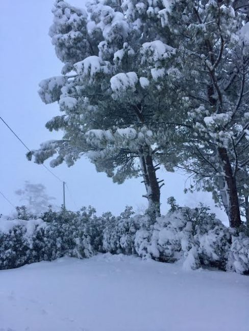 foto-lettori-neve-silvia-concetto-loro-piceno-san-lorenzo