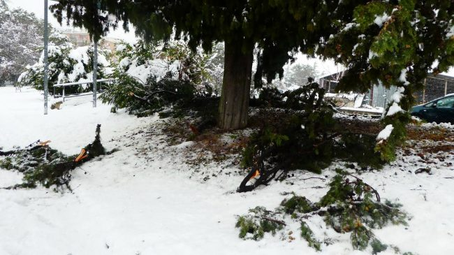 neve-macerata-gennaio-2017_Foto-LB-10-2-650x365
