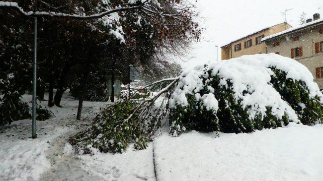neve-macerata-gennaio-2017_Foto-LB-11-2-650x365