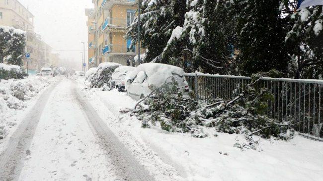 neve-macerata-gennaio-2017_Foto-LB-22-1-650x365