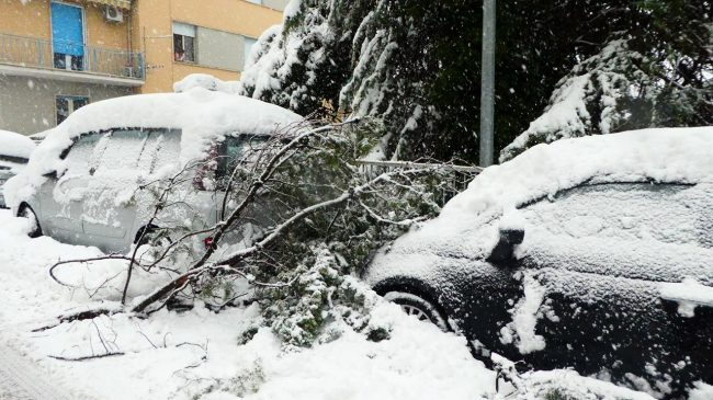 neve-macerata-gennaio-2017_Foto-LB-23-1-650x365