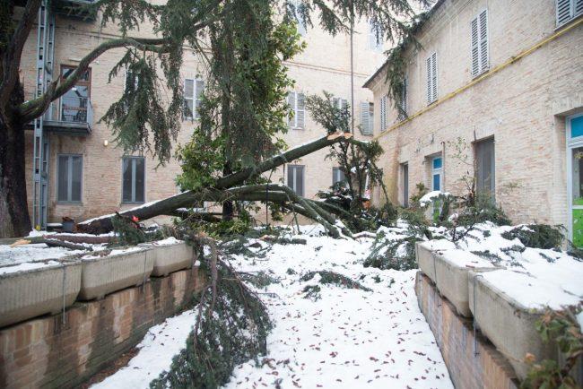 post-neve-2017-macerata-foto-ap-1-650x434