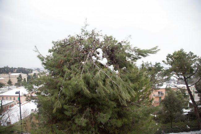post-neve-2017-macerata-foto-ap-2-650x434