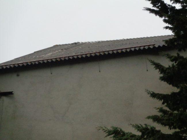Furiasse-2-650x488