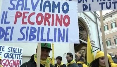 allevatori-montecitorio2-400x229