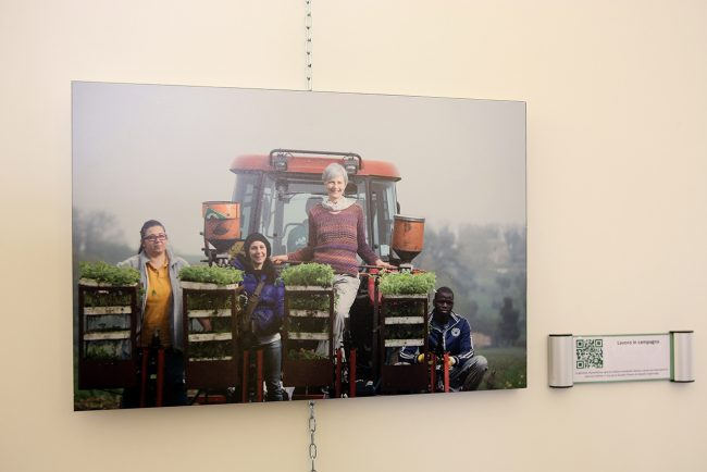 inaugurazione-mostra-arte-contadina_Foto-LB-2-650x434