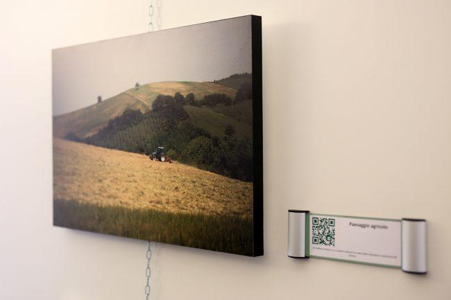 inaugurazione-mostra-arte-contadina_Foto-LB-4-650x433