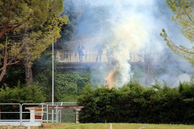 incendio-siepe-stadio-helvia-recina_foto-LB-2-650x433