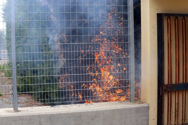 incendio-siepe-stadio-helvia-recina_foto-LB-3-650x433