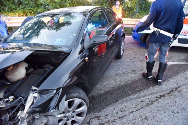 incidente-superstrada-cane-carreggiata-morrovalle-1-650x434