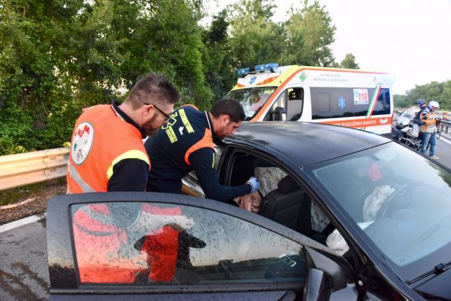 incidente-superstrada-cane-carreggiata-morrovalle-4-650x434
