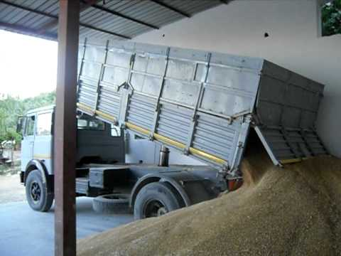 camion-grano