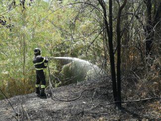 incendio-piediripa1-325x244