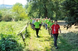 nordic-walking-Green-2-325x213