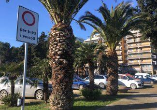degrado-auto-parcheggiate-nel-varco-sul-mare-civitanova-4-325x228
