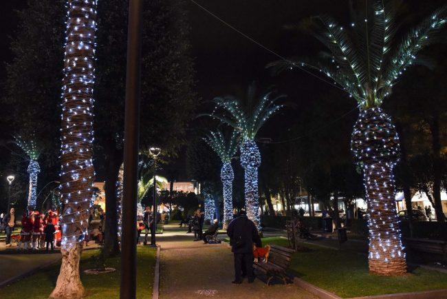 luminarie-natalizie-palme-equivoche-giardini-di-piazza-civitanova-1-650x434
