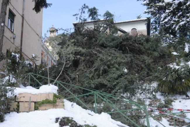 neve-interventi-vigili-del-fuoco-macerata-2-650x434