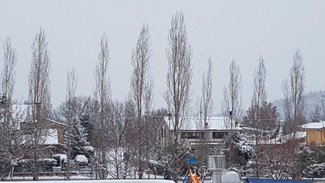 neve-tolentino-1-650x366